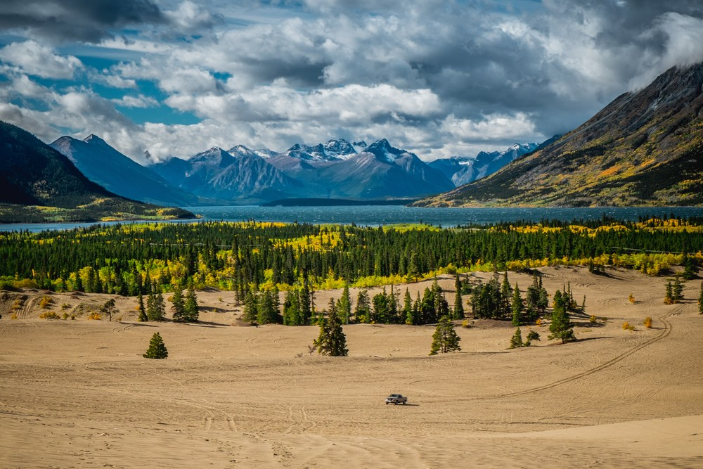The Smallest Desert within the World, Carcross in Canada