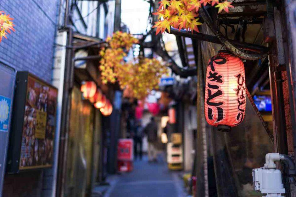 Golden Gai – Izakaya Alleys