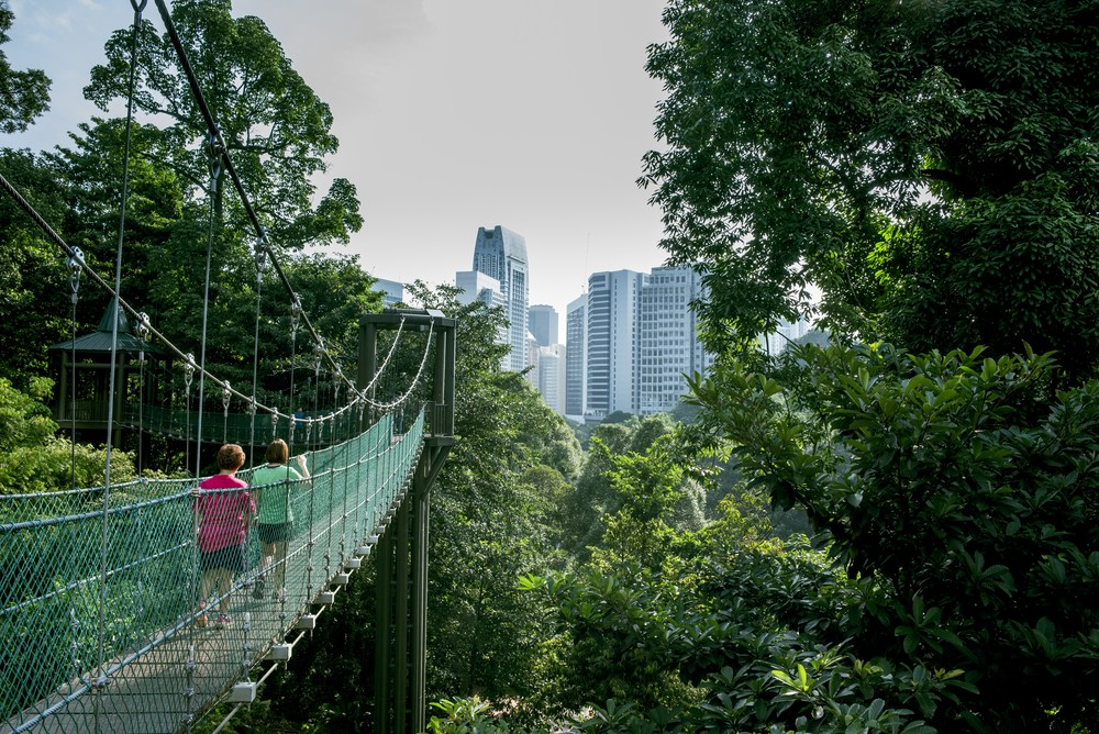 KL Forest Eco Park malaysia