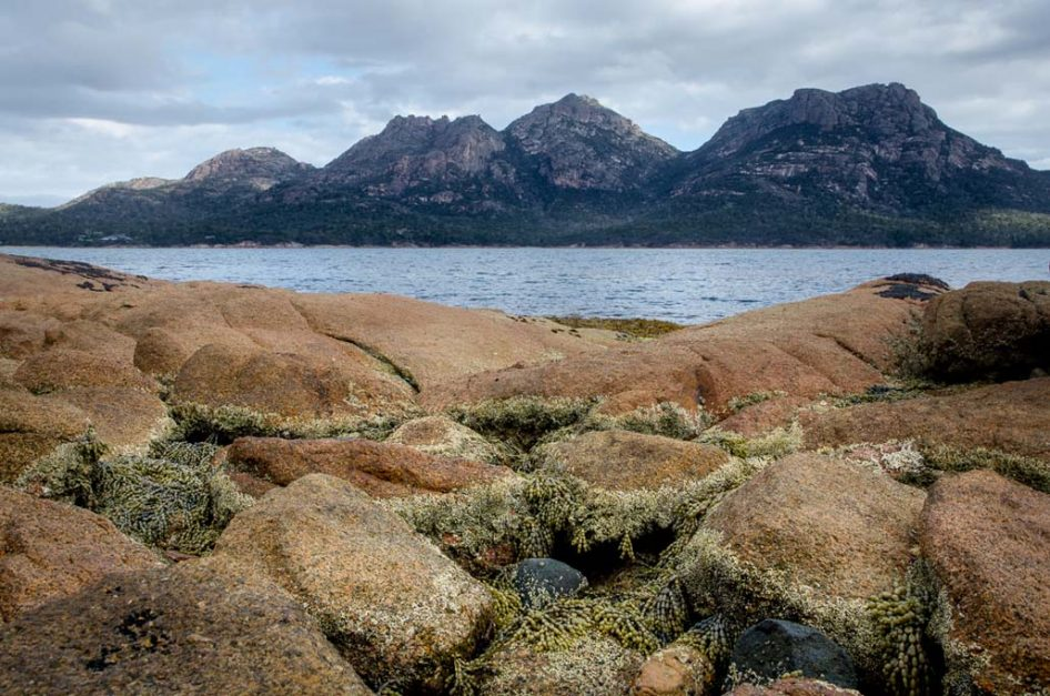 Chill out on world-class seashores at Freycinet Nationwide Park