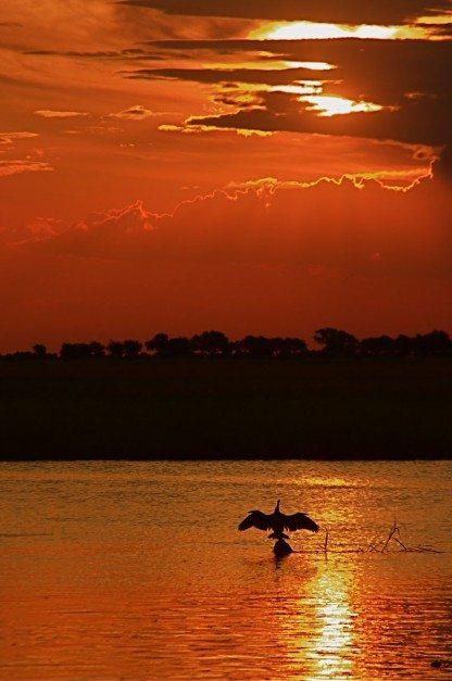Chobe Nationwide Park – Botswana