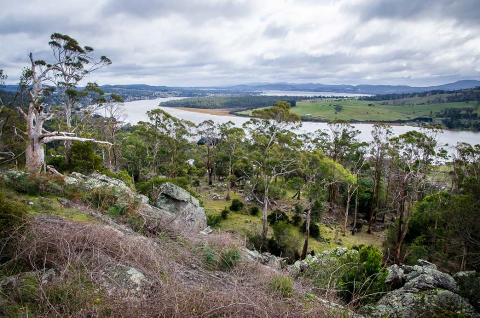 Sip and stroll up the Tamar Valley