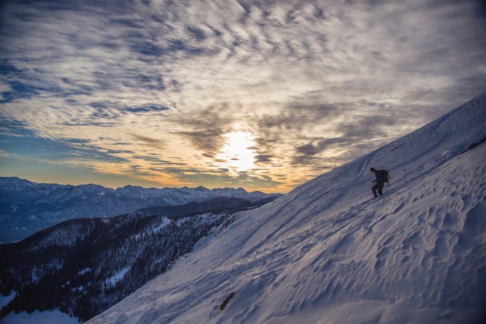 Alpine Zone
