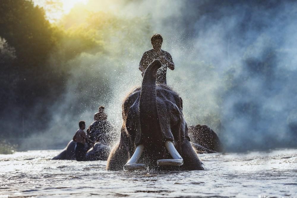 Travel Journey to Northern Thailand4