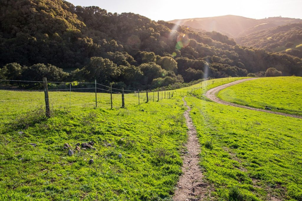 Health Hikes in Los Angeles1