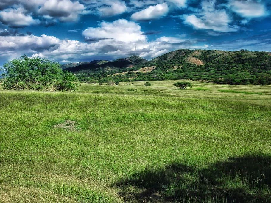 Puerto Rico grass beauty place