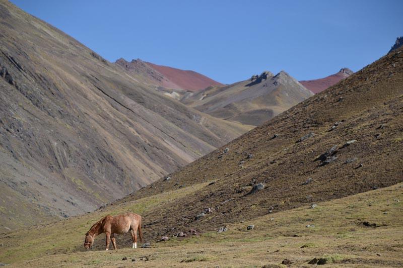 Rainbow Mountain Journey Peru