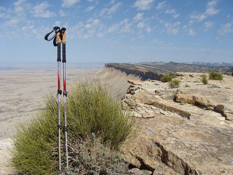 my-belated-praise-for-trekking-poles-960x720