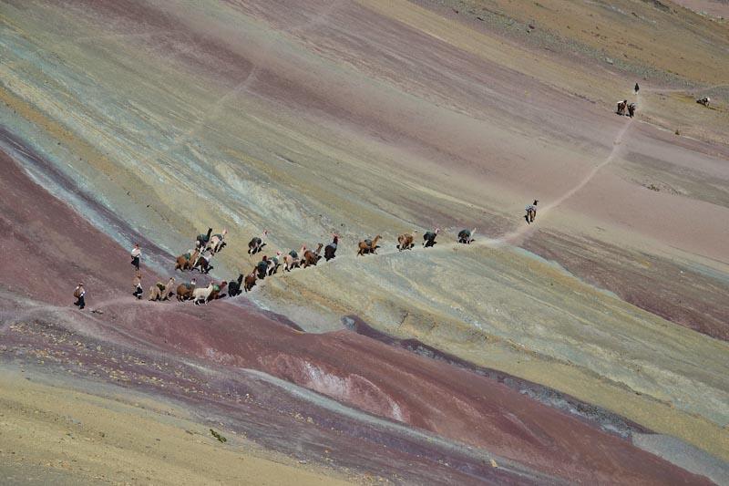 rainbow-mountain-Peru-horses