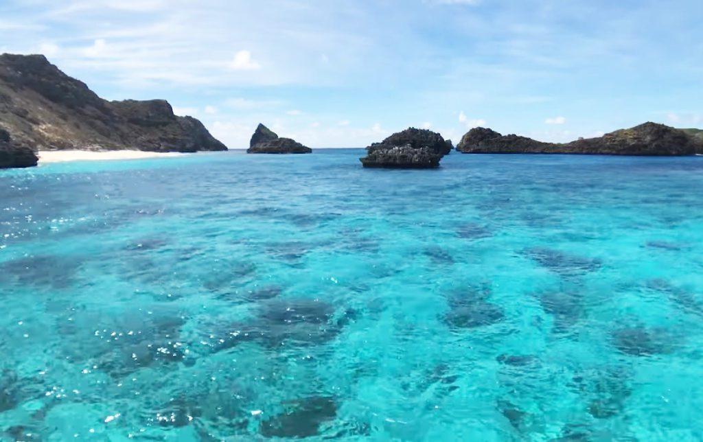 Discover Ogasawara islands diving