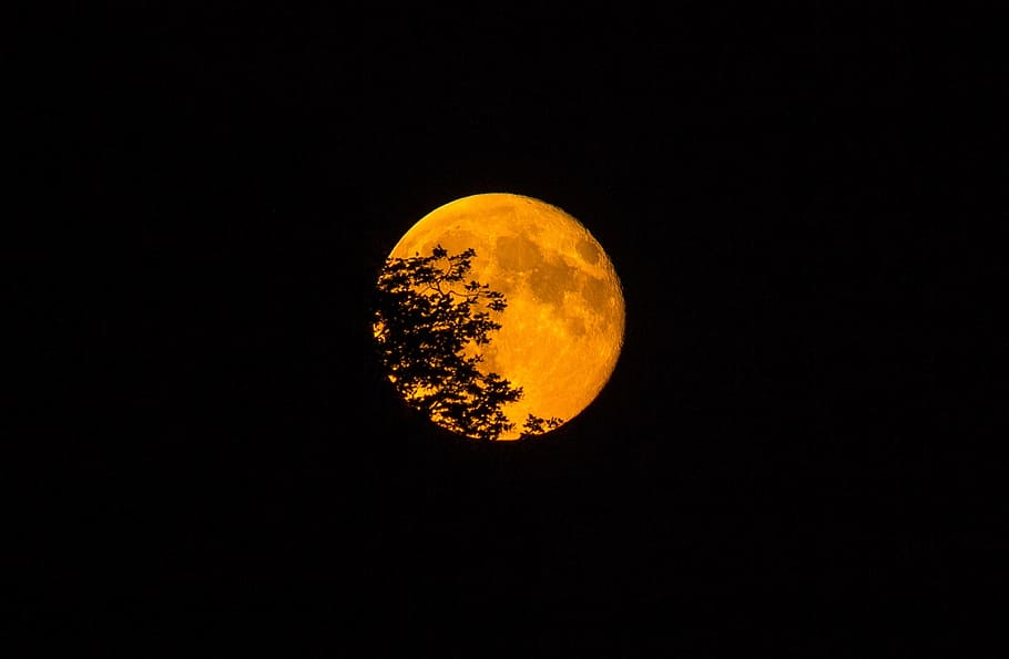 super-moon-2020