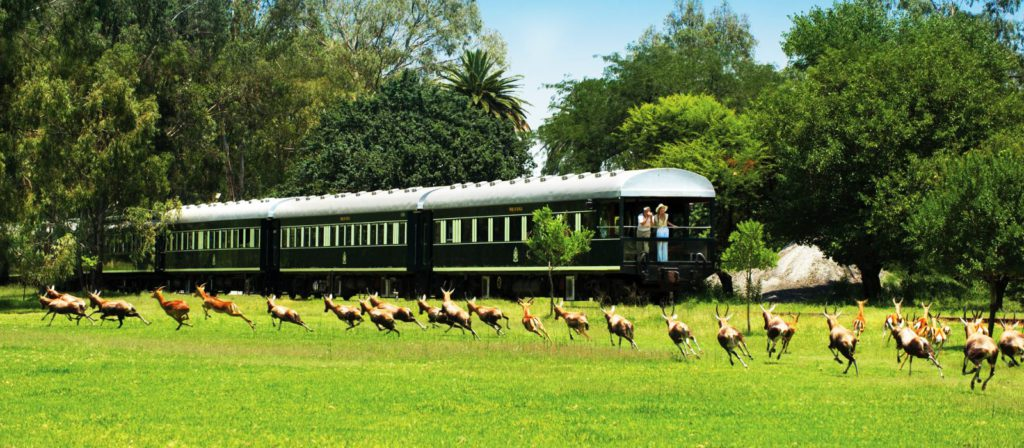 the train to Cape Town, South Africa