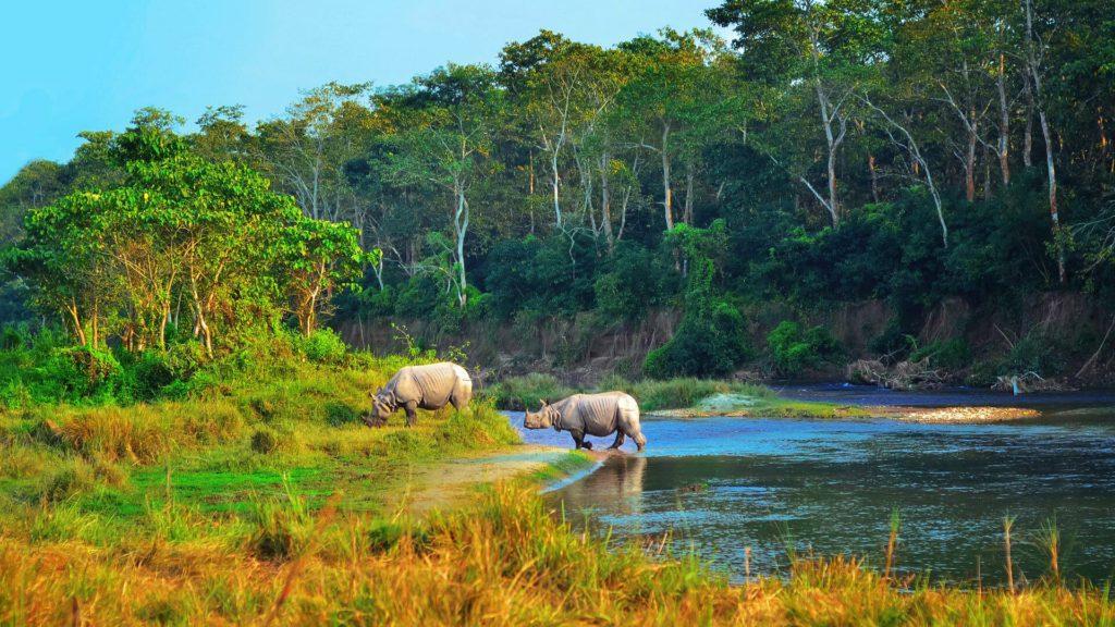 Visit Chitwan Nepal