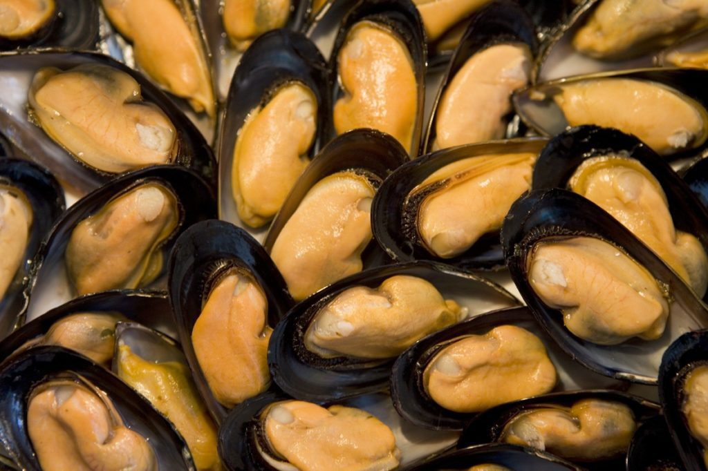 Ly Son mussel