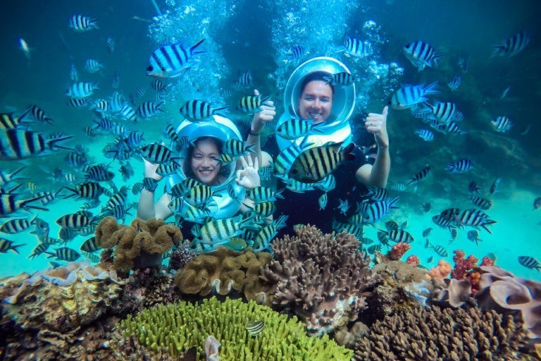 Phu Quoc coral park